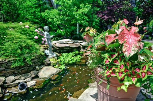 beautiful gardens va-3